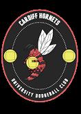 Cardiff Hornets